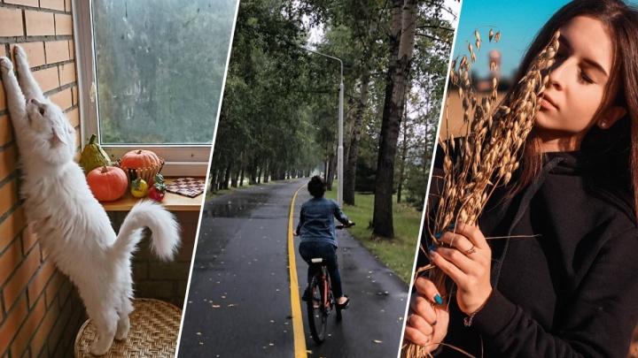13 снимков от красноярцев, доказывающих, что пятница 13-е — прекрасный день