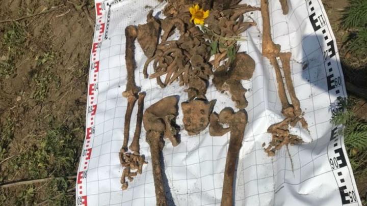 Он сражался за Родину: на Дону нашли останки сапера, бросившегося на огневые позиции немцев