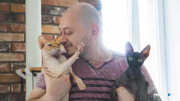 «Кошачий батя»: омский судмедэксперт поселился в маленькой студии с четырьмя котами