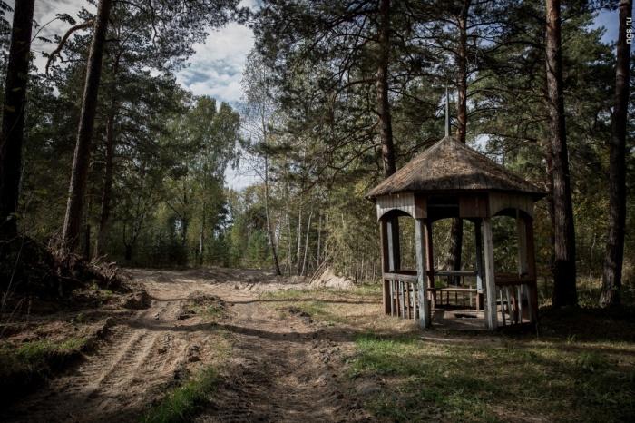 Беседка в Заельцовском парке
