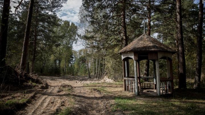 Строители спорткомплекса отсудили у Заельцовского парка 37 миллионов