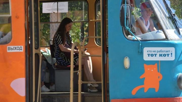 В 2020 году начнут строить трамвайную ветку в Солнечный