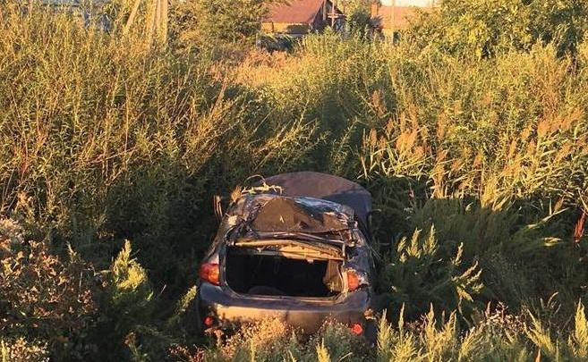 Улетел в камыши: под Самарой водитель Toyota снес дорожный знак и перевернулся