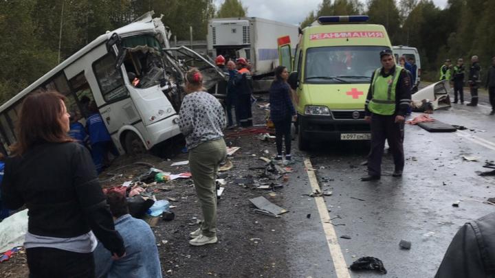 В Ярославской области автобус столкнулся с фурой: погибли 8 человек. Информация от следователей