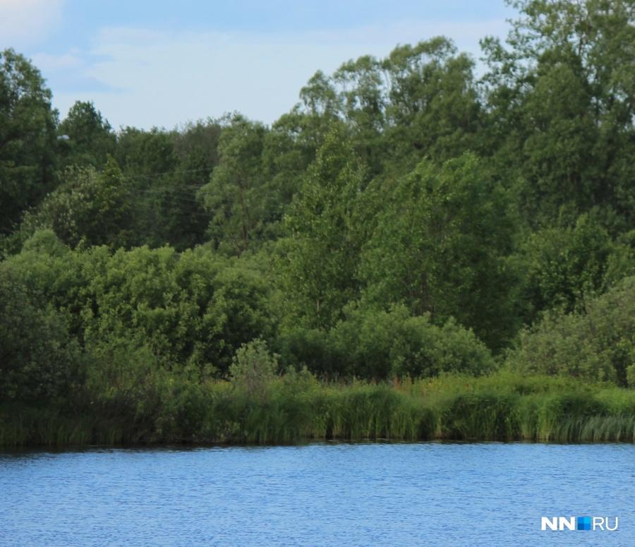 Ребенок потонул возере вНижегородской области