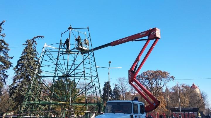 Праздник уже близко: возводить главную городскую елку начали в Ростове