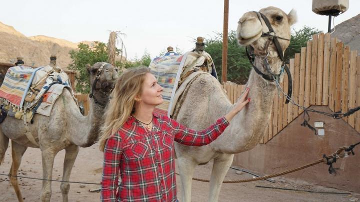 Марсианские пейзажи, три моря и дружелюбные верблюды: чем уральцев удивил Израиль