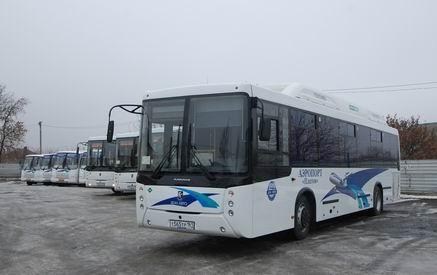 В аэропорт Платов пустят большие автобусы