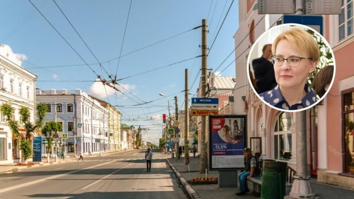 Губдума поддержала «закон Лапушкиной» о пешеходной улице Куйбышева