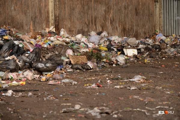 Старая площадка через три года будет рекультивироваться, а на новой появится мусоросортировочный комплекс