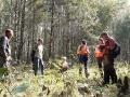 Время играет против людей: 5-летняя Зарина в лесу трое суток