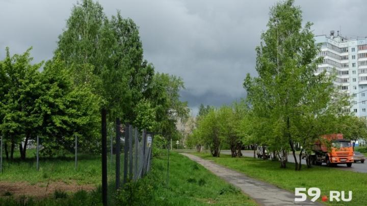 В Перми у нового зоопарка благоустроят парк Победы: рассказываем, что там будет