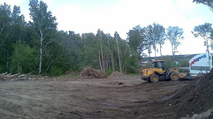 На месте вырубленного леса около центра Подгорного откроют автодром