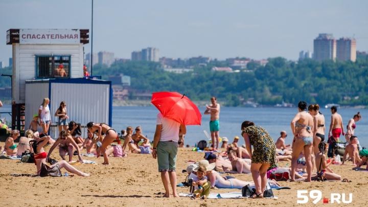 Сухо и солнечно: в воскресенье в Прикамье вернётся тропическая жара