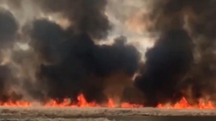 «Пламя стояло стеной»: в пригороде Челябинска вспыхнула трава под окнами жилых домов