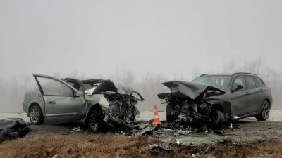 Водитель кроссовера устроил массовую аварию на федеральной трассе: один погибший