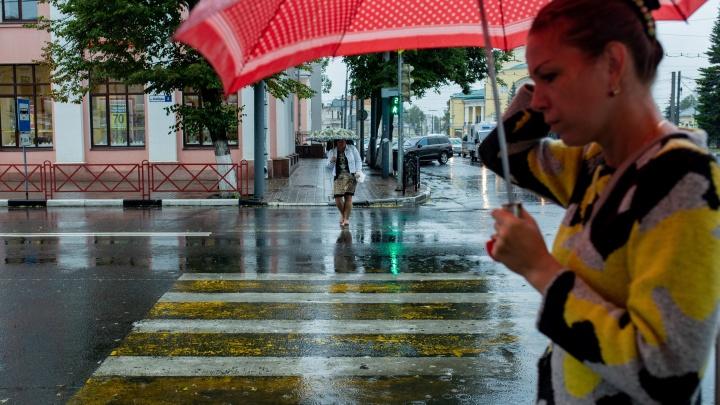 Гроза и сильный ветер: Ярославль вновь накроет стихия