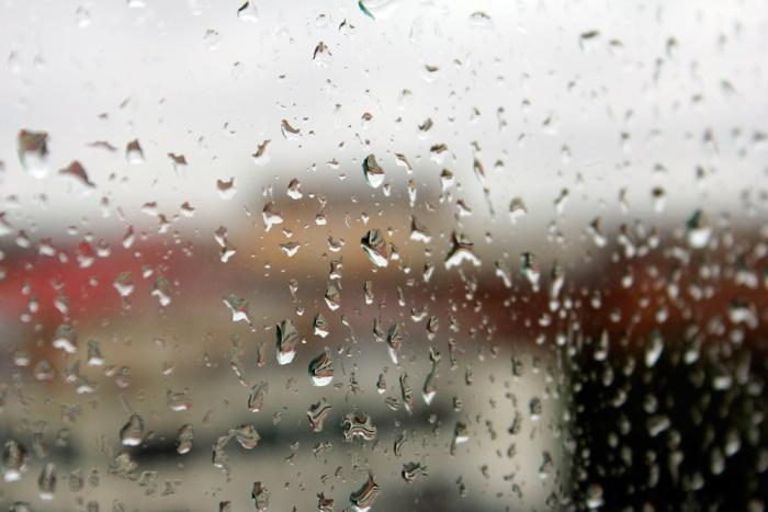 В выходные новосибирцам придется гулять под дождем