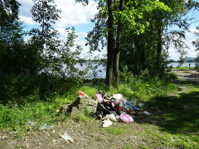 Почва загрязняется из-за парковки на газонах, выгула собак и несанкционированных свалок