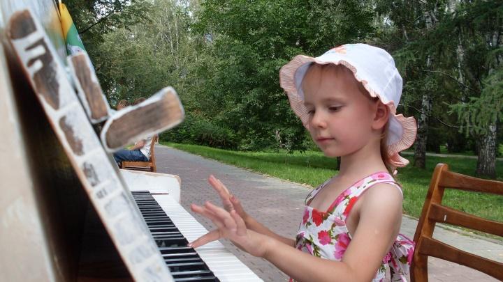 «И чем вам не концертный зал?»: волгоградцы сыграют «Собачий вальс» на спрятанном в кустах рояле