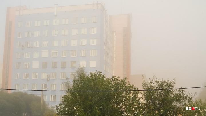 Туман и грозы: МЧС вновь предупредило жителей Прикамья о непогоде