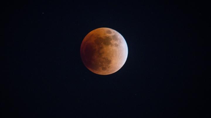 Луну украли