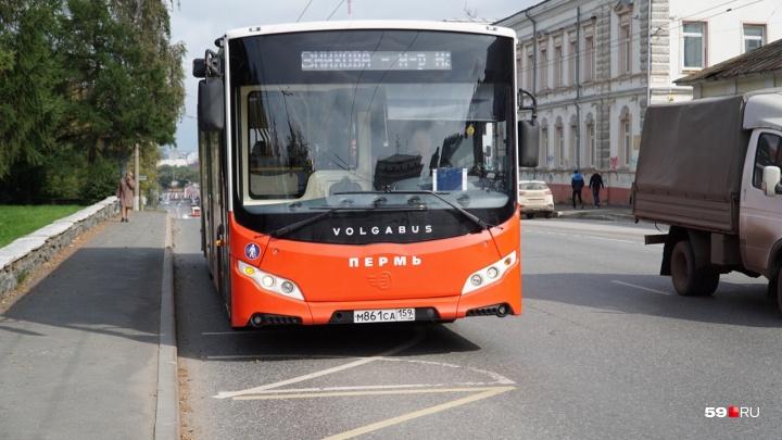 В Перми автобусы № 2 и 3 будут ходить до завода имени Шпагина