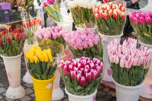Наутро директор теплицы не нашел большую часть цветов