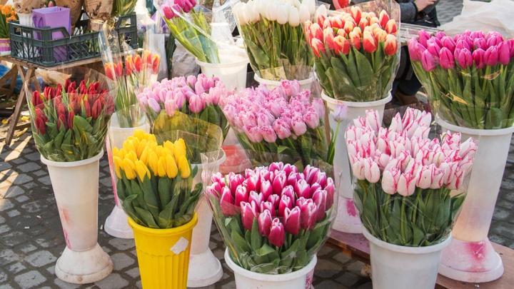 В Аксае рабочий украл тысячу тюльпанов