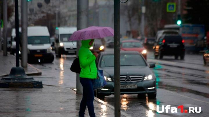 Гроза и шквалистый ветер: Башкирию накроет ураган