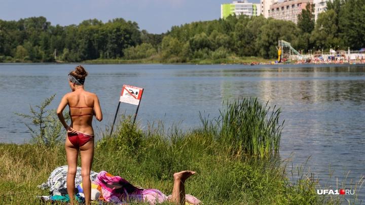 Новая неделя в Башкирии начнется с жары и духоты