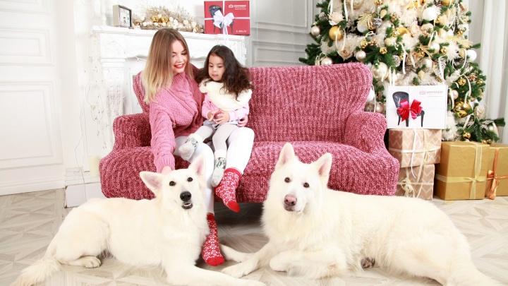 История еврочехла: как одна маленькая собачка помогла сделать прорыв в мебельном бизнесе