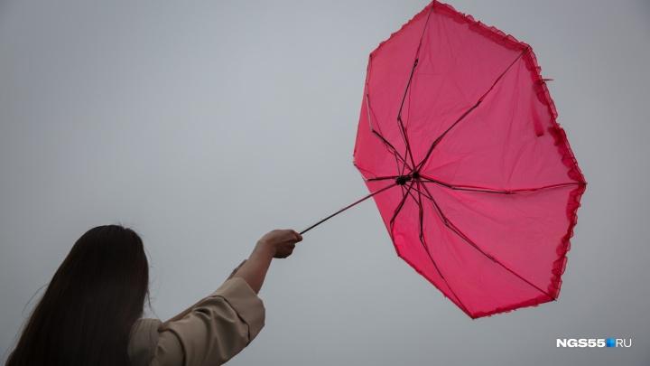 МЧС предупредило омичей об очень сильном ветре