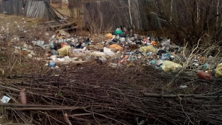 """""""Отчитались, что не нашли мусор"""": екатеринбурженка год воюет с Роспотребнадзором из-за незаконных свалок"""