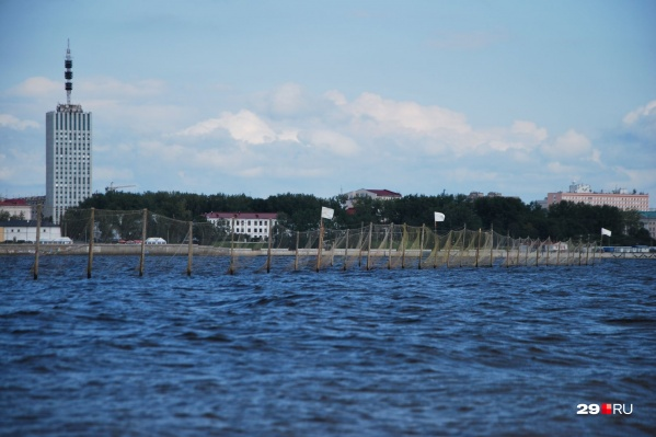 В Архангельске традиционно не будет оборудовано ни одного пляжа
