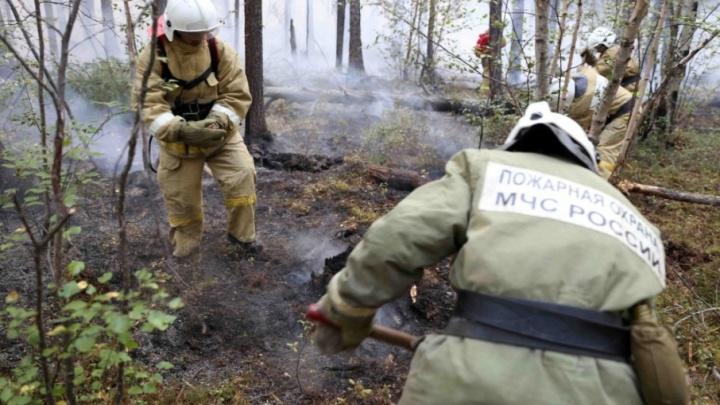МЧС: обстановка с пожарами на территории Зауралья стабилизирована