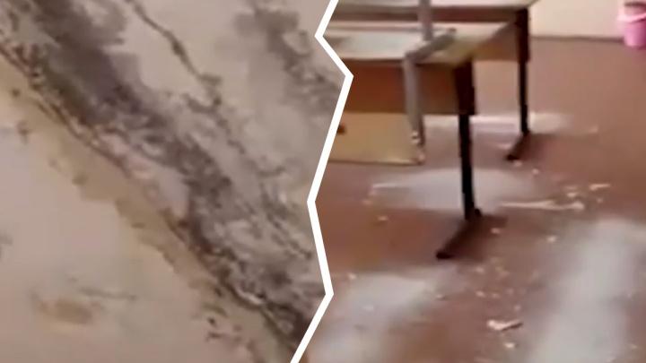 Плесень на потолке и штукатурка на партах: в ярославской школе рушится потолок