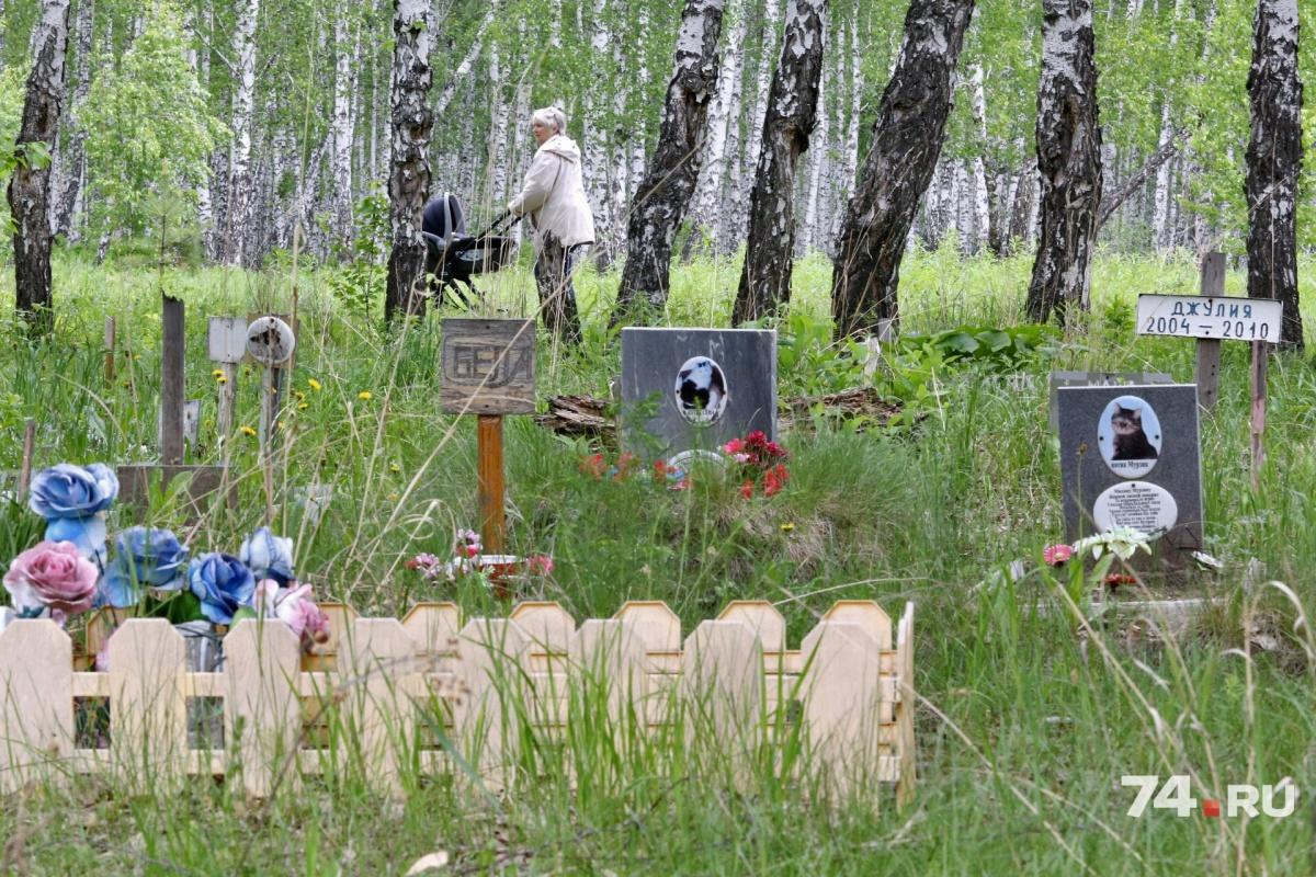 Кладбище пообещали убрать уже в этом году
