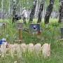Нелегальное кладбище домашних животных в Челябинске пообещали убрать уже в этом году