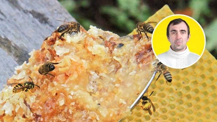 В Башкирии еще одним миллионером стало больше: пчеловод выиграл в лотерею кругленькую сумму