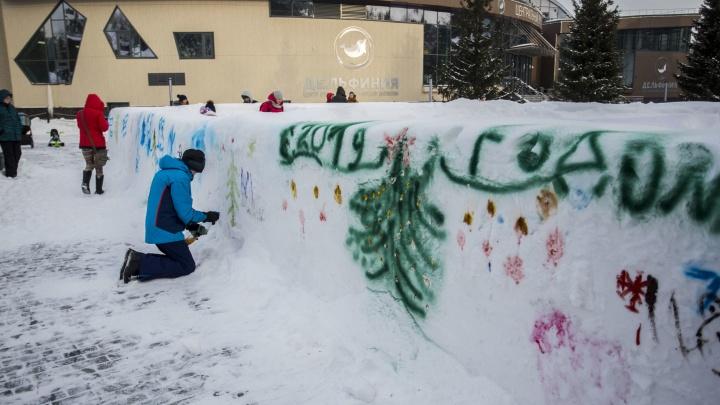 Сердечки, ёлочки и зверьки: новосибирцы разрисовали снежный лабиринт в зоопарке