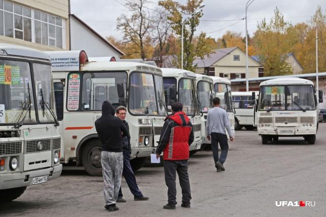 Почти половина маршрутчиков столицы — нелегалы