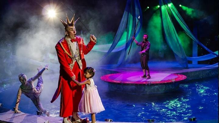 В ярославском цирке сделают озеро и установят 15-метровые фонтаны