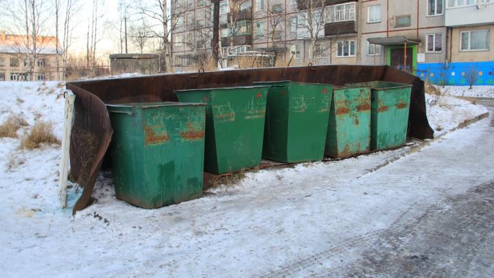 «Более тысячи адресов»: власти Архангельска опубликовали список контейнерных площадок города