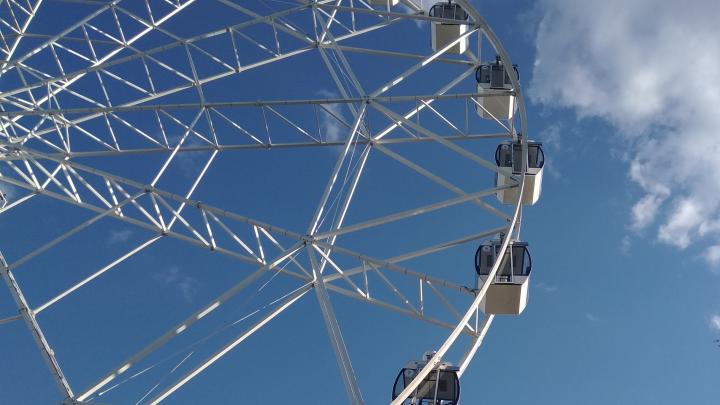 «Общайтесь, делайте трансляции!»: в парке Гагарина появился бесплатныйWi-Fi