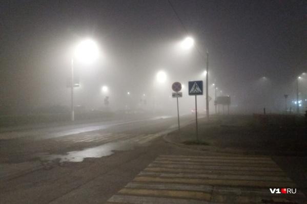 Тумана метеорологи не предвещали