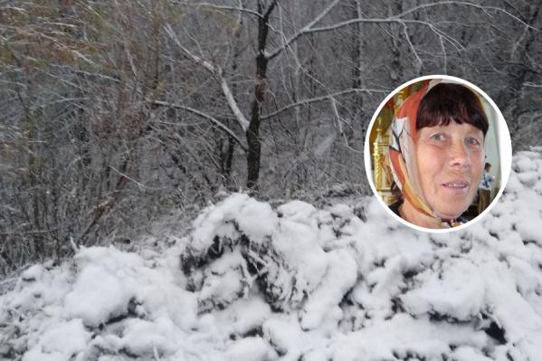 Поиски женщины осложняются выпавшим снегом