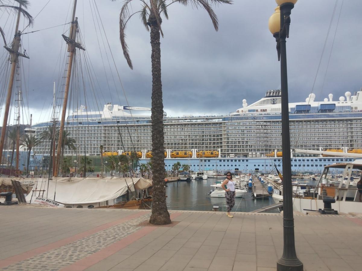 Круизный лайнер можно сравнить с огромным пятизвездочным отелем