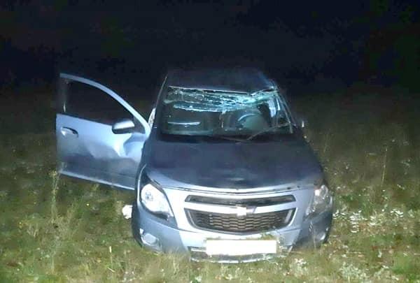 Погиб в кювете: в Башкирии водитель не справился с управлением