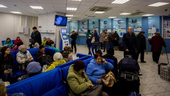 Мужчинам дороже: сибирячкам дали скидку на автобусы из Новосибирска накануне 8 Марта